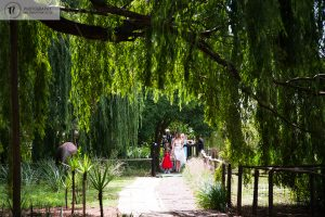 Bride walking down a path in a forest